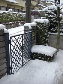 玄関先の積雪状況