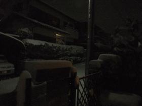 Snow_110117