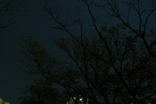 NightView2_051217
