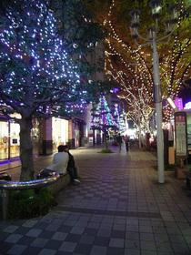 Sakae_051115