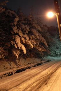 SnowKouzouji1_051218