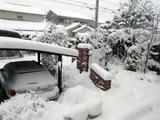 Snow_050202