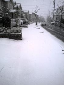 Snow_051218