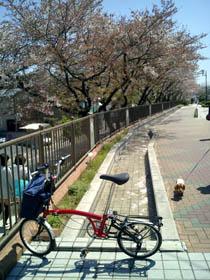 Chiyodabasi_040410_1.jpg