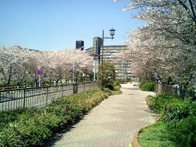 Chiyodabasi_040410_2.jpg